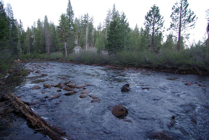 Mono Creek (2)