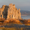 A tufa formation in Mono Lake just after sunrise.