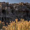 Golden plants and Mono Lake's sand tufa.