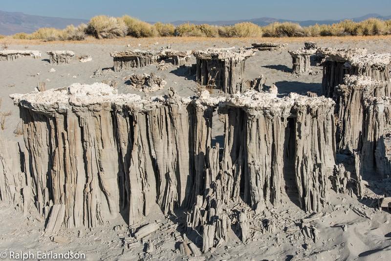 A ring of sand tufa formations at Mono Lake.