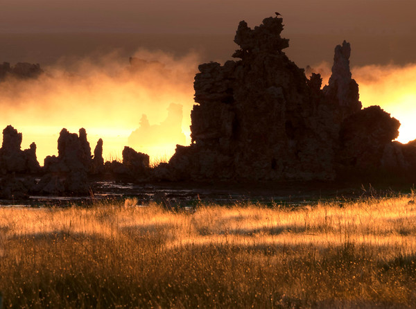 Sunrise on Mono Lake, Mono Basin National Forest Scenic Area, CA