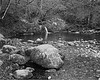 CH000430  Lake District Aira Force mono