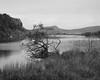 IMG_9034 Hadrians Wall Crag Loch mono