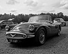 Daimler Dart sports ca
