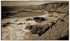 Bodega Headlands #2