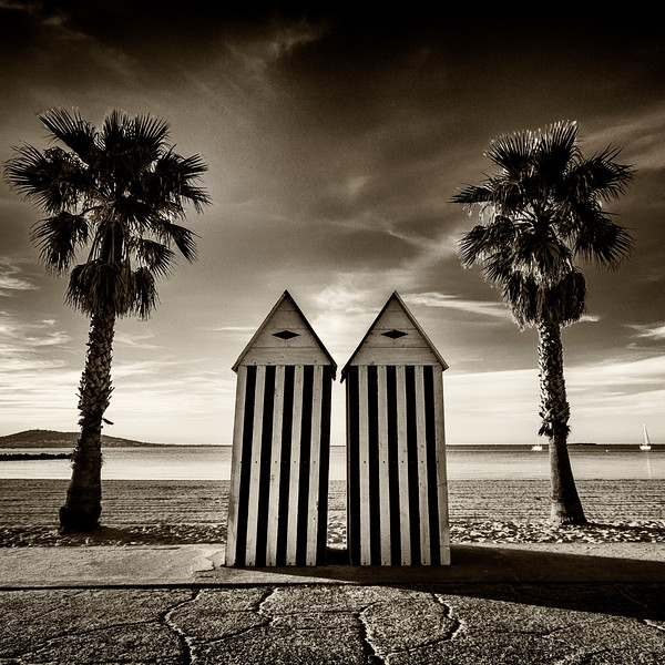 Beach huts and palm trees