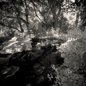 Pond, Provence, France