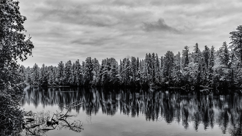 Tahquamenon River Winter Monochrome