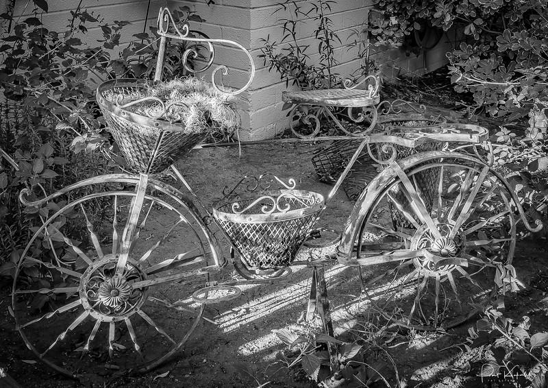 The Flower Bike