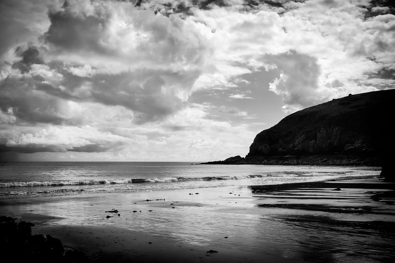 Skrinkle Haven 2 monochrome