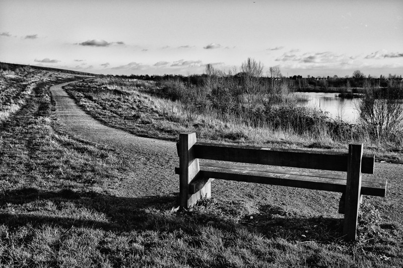 Lonely seat at Ingrebourne Hill, Rainham