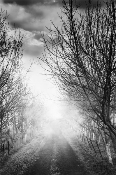 Path to Unkown BW