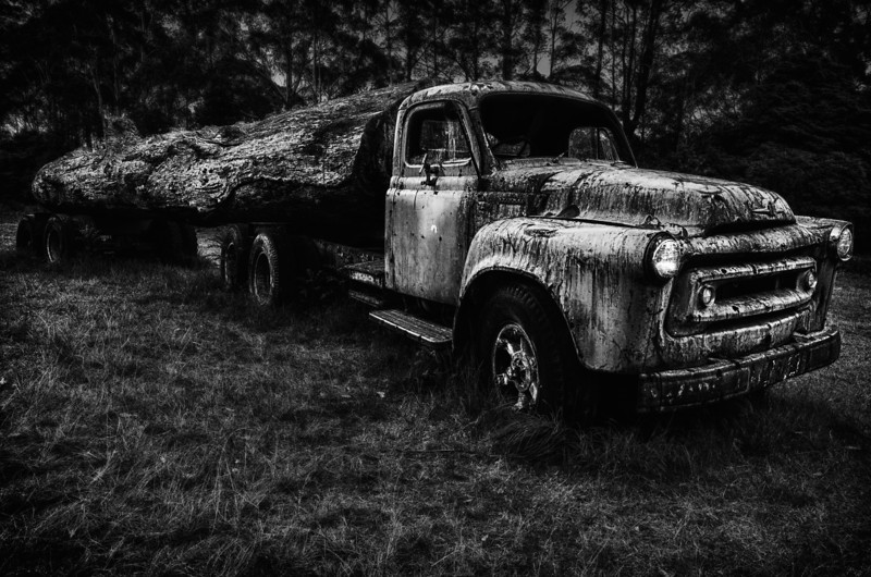 Put Out To Pasture