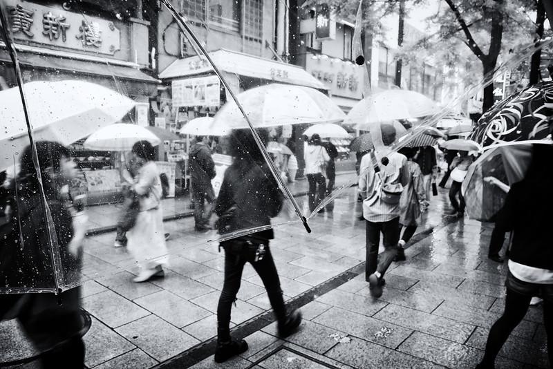 World through the umbrella