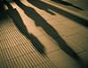 Pavement Shadows<br /> London
