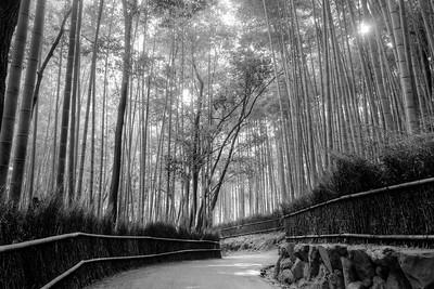 arashiyama tenryuji