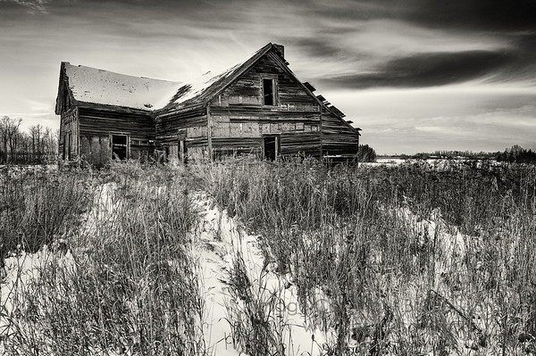 Abandoned farmhouse - monochrome with a hint of sepia