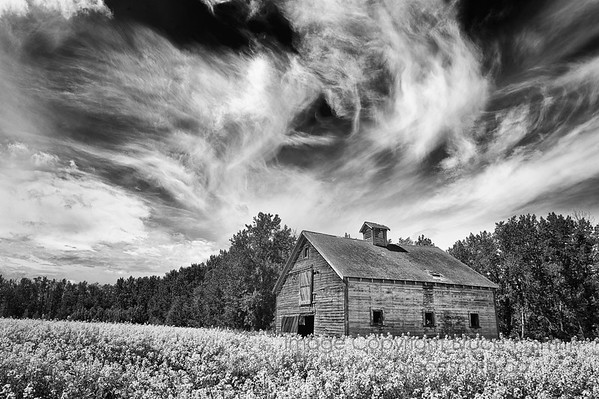 Barn under a big sky
