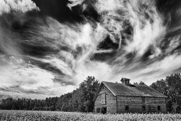 Old barn under a big sky