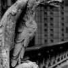 Eagle gargoyle on the parapet of the Cathedral of Notre Dame, Paris.