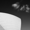 Concert Hall roof detail, Sydney Opera House (b&w version).
