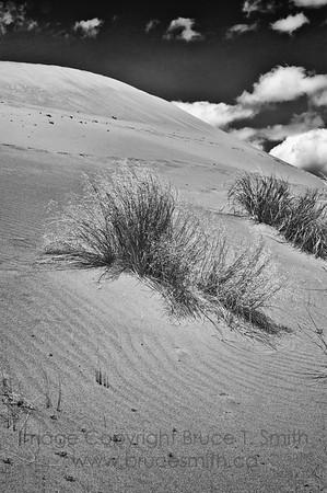 Farwell Canyon sand dune