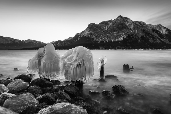 Ice Stumps - monochrome