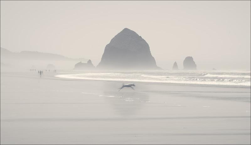To the sea, Cannon Beach, Oregon