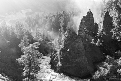 Yellowstone Canyon, b&w, Yellowstone NP, WY, USA May 2018-1