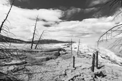 Mammoth Hot Springs, b&w, Yellowstone NP, WY, USA May 2018-2