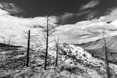 Mammoth Hot Springs, b&w, Yellowstone NP, WY, USA May 2018-4