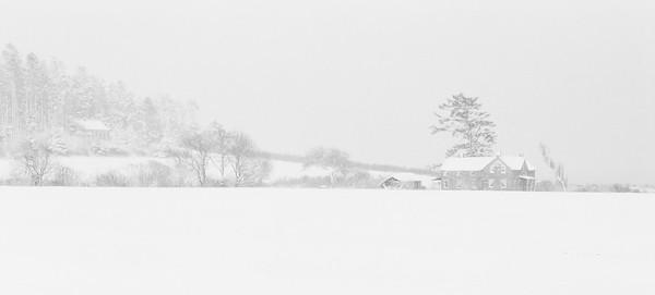 Snow on Ebey's Prairie.