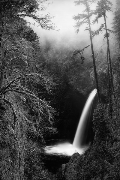 An Eagle Creek White Christmas · Monochrome