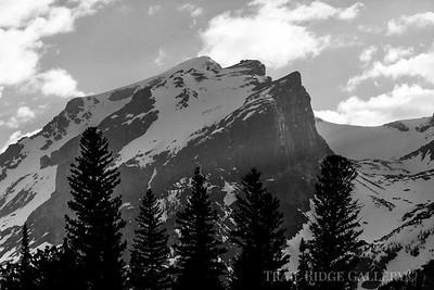 Hallet Peak In Afternoon