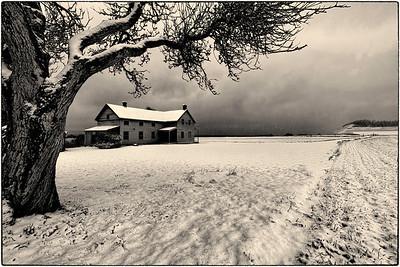 Pioneer Winter