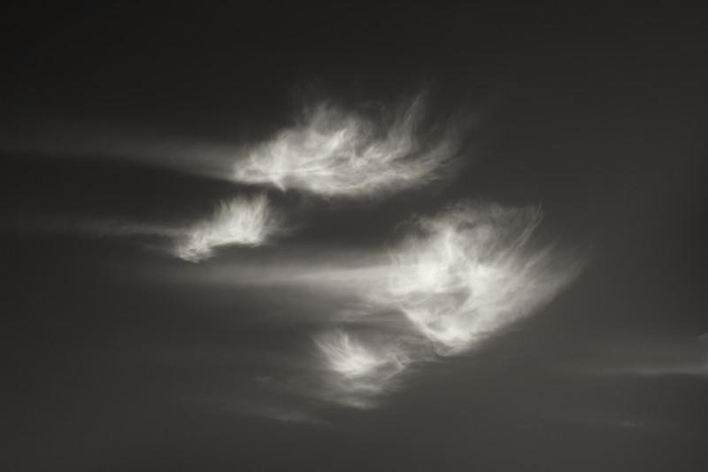 Cloudscript · Quattro