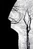 Surrealistic Portrait of Salvador Dali