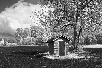 There is a House in Infrared