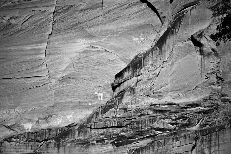 Pictographs-Canyon de Chelly
