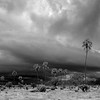 Mwagusi storm scapeB&W