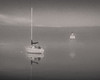 Foggy morning in Grand Marais harbor
