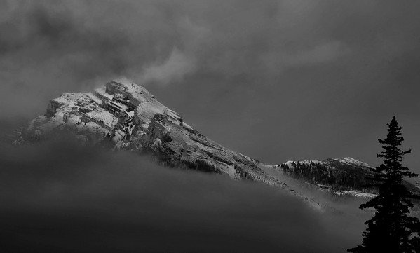 A Peek through the Fog, Banff National Park, AB