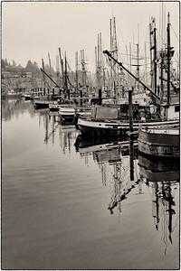 Newport Fleet