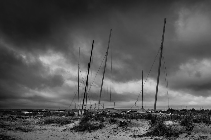 Masts on the Shore