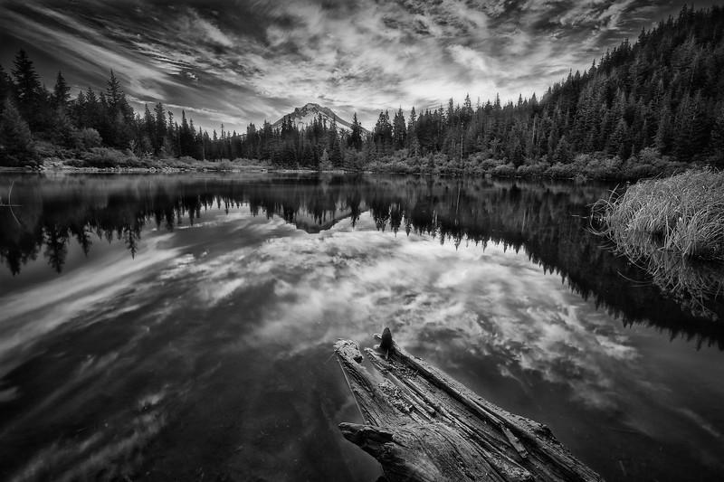 Mirrored Soul · Monochrome