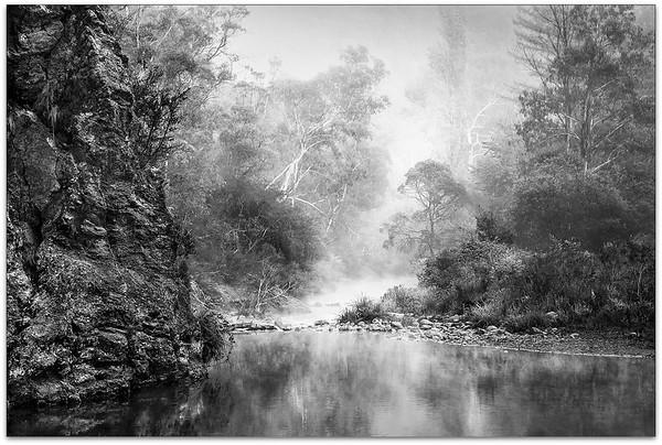 Foggy Howqua River