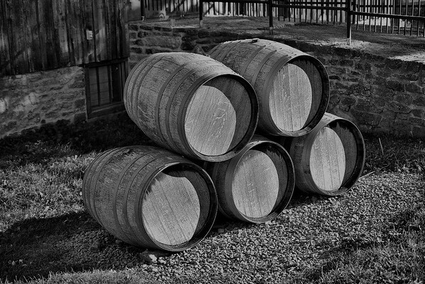 Winery Tours in GreyScale, Prince Edward County, Ont