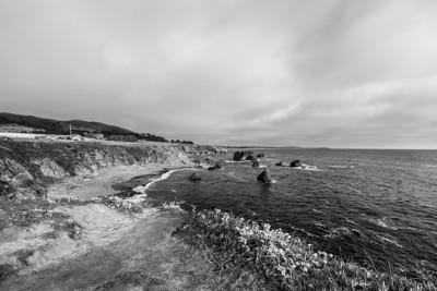 Carmet Beach. Bodega Bay, CA