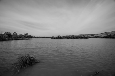 Lake Elizabeth/Fremont Central Park - Fremont, CA, USA