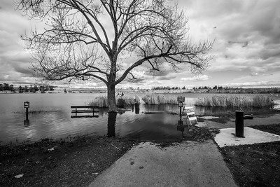 Flooding from the recent SF Bay Area mega storms. Lake Trail. Shadow Cliffs Regional Park - Pleasanton, CA, USA